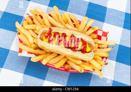 Un hotdog fresca circondata da caldissimo le patatine fritte in un rosso che serve cesto su una tovaglia a scacchi. Foto Stock