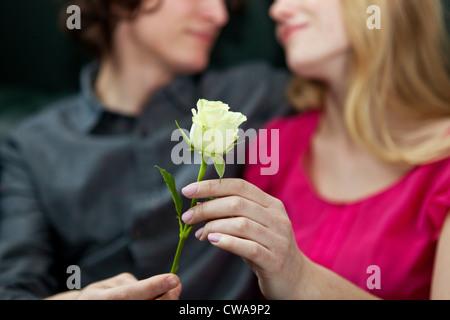 L uomo dando rose per donna Foto Stock