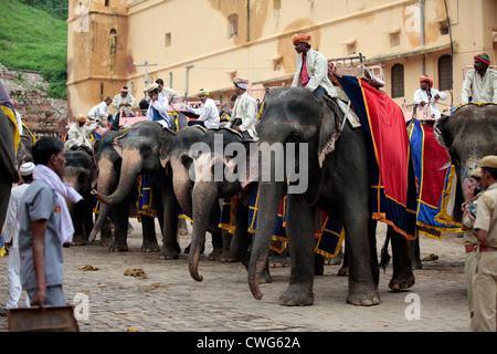 Gli elefanti e mahouts a forte amber Foto Stock