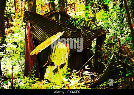 Manipolati digitalmente immagine di un abbandonate e capanna in bosco, Alriston, East Sussex, Regno Unito. Foto Stock