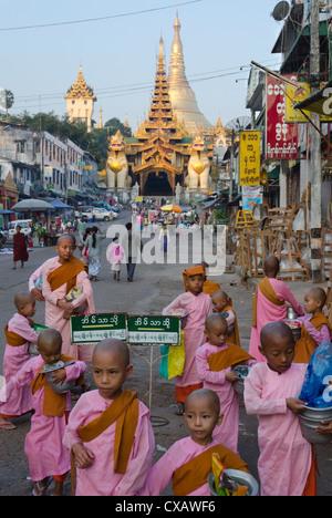 Giovane suora novizi di fronte all'ingresso orientale di Shwedagon, Yangon, Myanmar (Birmania), Asia Foto Stock