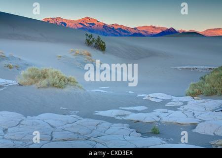 Fango essiccato in Mesquite Flat dune di sabbia, il Parco Nazionale della Valle della Morte, California, Stati Uniti Foto Stock