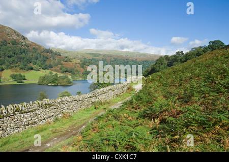 Sentiero pedonale al Rydal Water da Loughrigg Terrace in estate Cumbria Lake District National Park Inghilterra Regno Unito GB Gran Bretagna Foto Stock