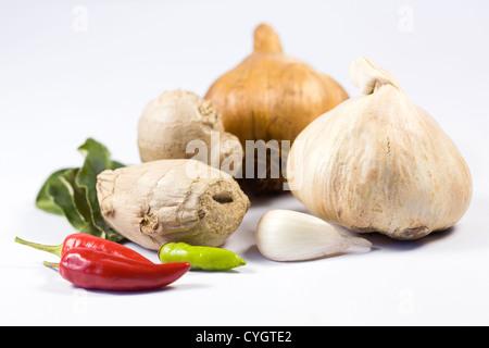Una selezione di prodotti freschi ed essiccati le erbe aromatiche e le spezie contro uno sfondo bianco. Foto Stock