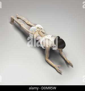 Lo scheletro stratificate su corpo femminile nella variazione dolphin plank pongono mostra allineamento scheletrico Foto Stock