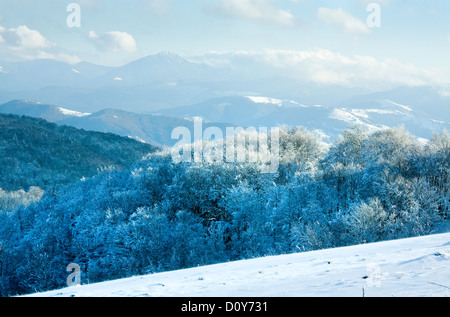 Prima neve invernale e montagna del bosco di faggio Foto Stock