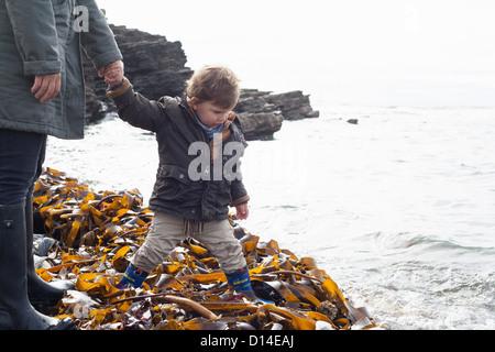 Padre e figlio giocando in kelp sulla spiaggia Foto Stock