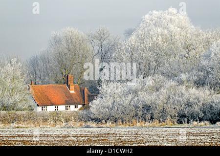 Inverno tempo campagna boschi alberi in terreno agricolo campo paesaggio con Brina di ruggito su hedgerow e paese cottage tetto inglese albero Essex Inghilterra Regno Unito Foto Stock