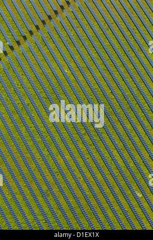 Pannelli solari su un campo, foto aeree Foto Stock