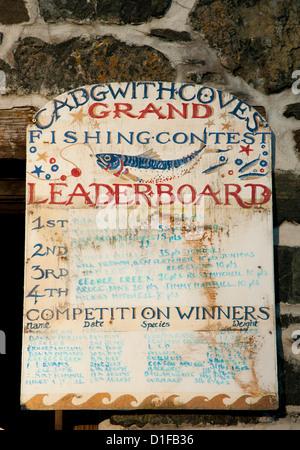 Un vecchio legno verniciato accedi Cadgwith Porto sulla penisola di Lizard in Cornovaglia, England, Regno Unito, Europa Foto Stock