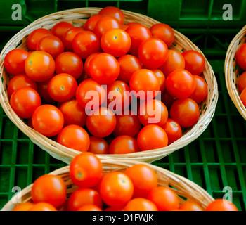 pomodori di ciliegia Foto Stock