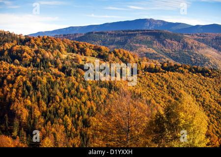 Babia Gora, beskid Zywiecki, Beskidy mountains, Polonia Foto Stock