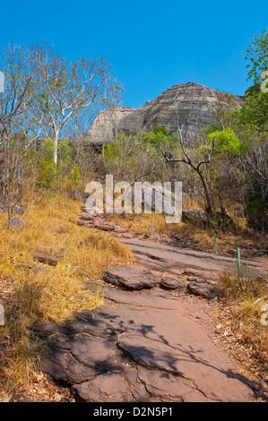 Kakadu National Park, sito Patrimonio Mondiale dell'UNESCO, il Territorio del Nord, l'Australia, il Pacifico Foto Stock