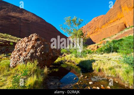 L'Olgas (Kata Tjuta), Uluru-Kata Tjuta National Park, sito Patrimonio Mondiale dell'UNESCO, il Territorio del Nord, Foto Stock