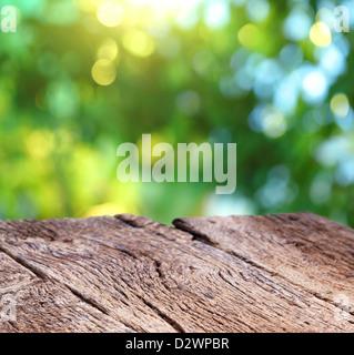 Blur sullo sfondo della natura con una vecchia scheda di legno. Foto Stock