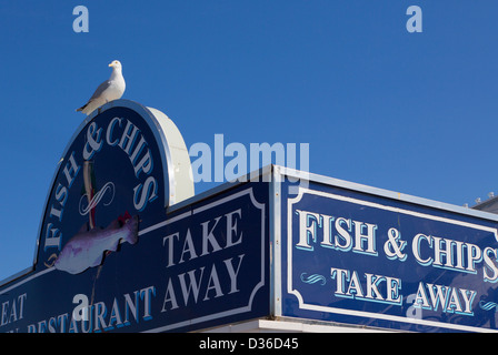 Gabbiano seduta sul pesce e segno di chip, Brighton, Sussex, Inghilterra Foto Stock