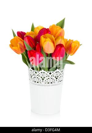 Rosso e arancio tulipani in vaso. Isolato su sfondo bianco Foto Stock