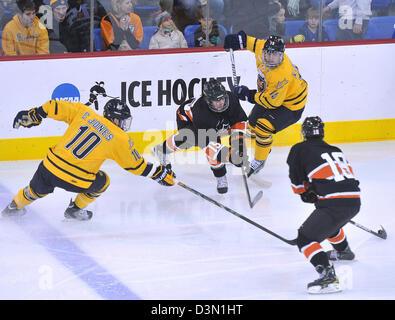 Hamden--Quinnipiac Vs Princeton hockey gioco di azione. Casolino Photo-Peter Foto Stock