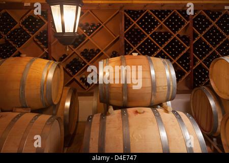 Botti da vino e bottiglie in ambienti con scarsa illuminazione