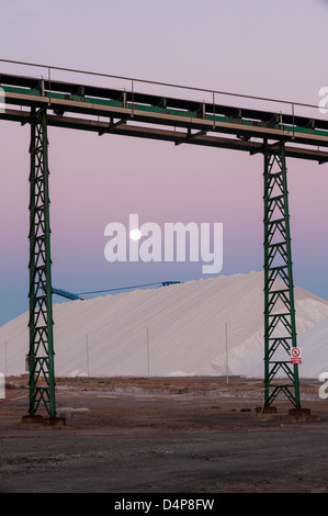Sunrise su pali di sale, sale industria. Torrevieja. Alicante. Spagna Foto Stock