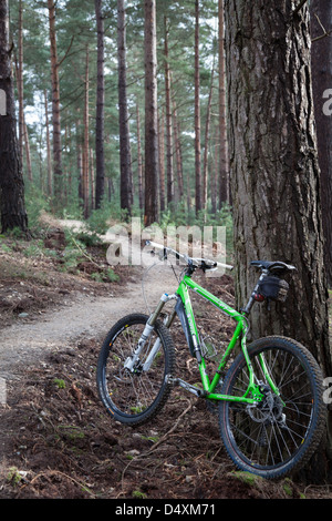 Mountain bike a Swinley Forest, vicino a Bracknell nel Berkshire Foto Stock