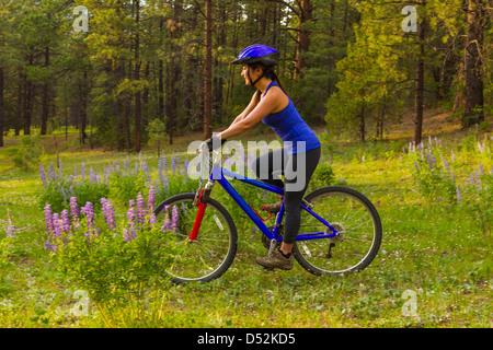 Donna cinese equitazione mountain bike in Prato Foto Stock