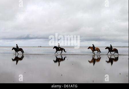 FILE - Un archivio foto datata 13 agosto 2011 mostra un gruppo di piloti al galoppo lungo la spiaggia di Sankt Peter Foto Stock