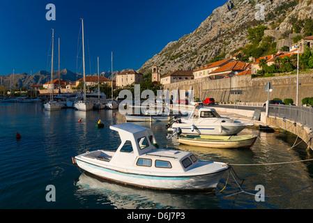 Kotor Marina, Kotor, Baia di Kotor, Montenegro, Europa Foto Stock