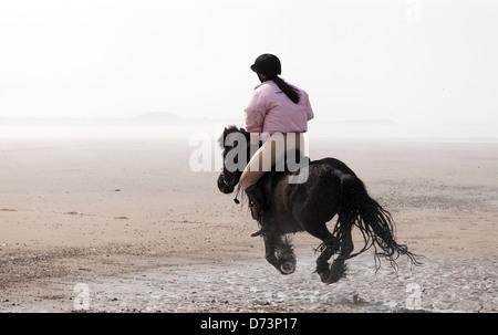 Una giovane donna in sella il suo animale domestico pony sulla spiaggia, Holkham Beach, NORFOLK REGNO UNITO Foto Stock