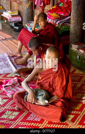 Monaco buddista giocando con un gatto a Shwe Yaunghwe Kyaung, un famoso monastero di teak, Nyaungshwe, Lago Inle, Foto Stock
