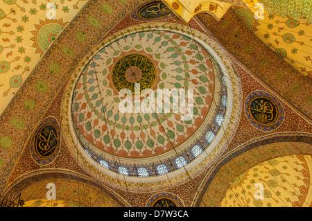 Yeni Cami o la nuova moschea, cupole e cupole, citta' vecchia di Istanbul, Turchia Foto Stock