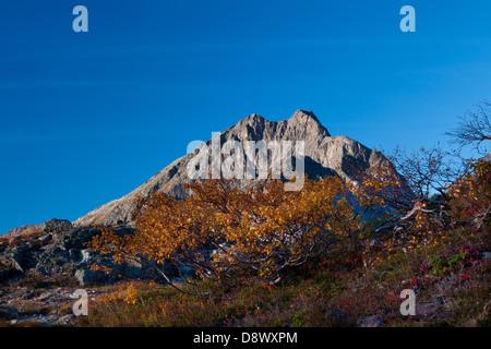 La montagna Blånebba, visto da Litlefjellet, nella valle Romsdalen, Rauma kommune, Møre og Romsdal fylke, Norvegia. Foto Stock