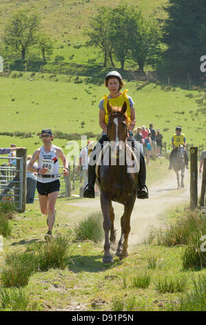 Hotel a Llanwrtyd Wells, Regno Unito. 8 Giugno 2013. Oltre 400 corridori competere contro 65 cavalli nell'uomo V Horse 23 miglio marathon, nel corso di estenuanti terreno montuoso.L'evento è stato concepito da Gordon Green al suo pub la Neuadd Arms nel 1980 su overhearing una discussione se un uomo era uguale a quella di un cavallo in funzione cross country sulla distanza. Il premio in denaro per la battitura di un cavallo è stato aumentato ogni anno da £1.000 fino a Huw Lobb ha vinto £25.000 nel 2004 battendo il primo cavallo per 2 minuti con un tempo di 2:05:19. Credito: Graham M. Lawrence/Alamy Live News.