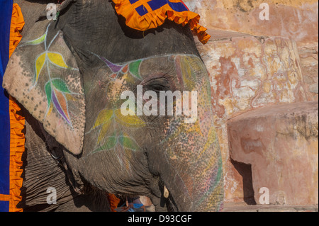 Elefante colorato a Jaipur, Rajasthan, India Foto Stock
