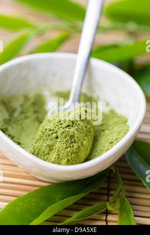 Matcha in polvere tè in una ciotola Foto Stock