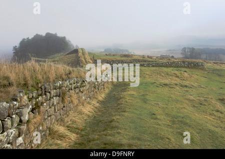 Vista da Milecastle 37 di legno di Housesteads, parete di Adriano, sito UNESCO, il Parco nazionale di Northumberland, Foto Stock