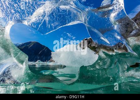 Il ghiaccio del ghiacciaio partorito dal ghiacciaio Sawyer, Williams Cove, Tracy Arm-Ford terrore della Wilderness Area, a sud-est di Alaska, STATI UNITI D'AMERICA
