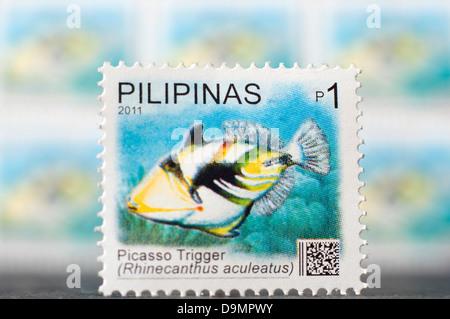 Filippine spedizione stampswith tema marino in studio di impostazione Foto Stock