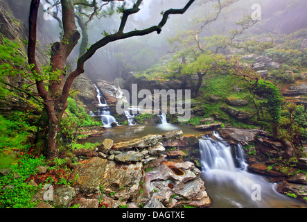 Le cascate di Dimosari canyon, Sud isola di Eubea, Grecia centrale. Foto Stock