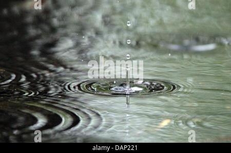 FILE - Un archivio foto datata 13 aprile 2011 mostra delle gocce di pioggia caduta in una pozza di Lipsia, in Germania. Foto Stock