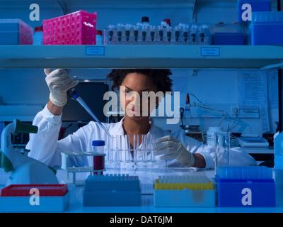 Scienziato che lavora in laboratorio Foto Stock