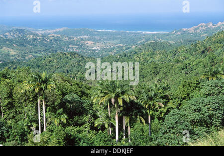 Vista di Saint Andrew parrocchia amministrativa. Barbados Foto Stock