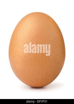 Marrone singolo uovo di pollo isolato su bianco Foto Stock