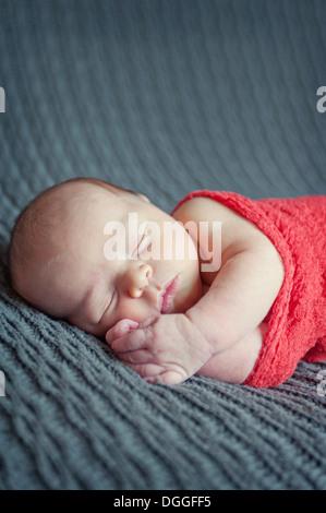 Bambino giacente sulla coperta grigio, dormendo Foto Stock