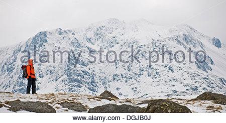 L alpinista in piedi di fronte a vertici Tre Cime tre cime delle ... c57d17eea8b