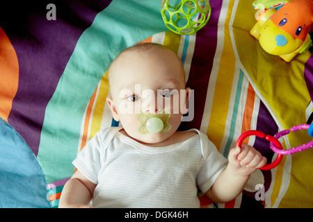 Bambino giacente sulla coperta succhiare il succhietto e giocare con i giocattoli Foto Stock