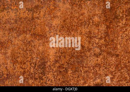 Rusty piastra metallica, sfondo Foto Stock