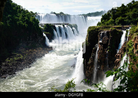 Cascate di Iguassù, argini sul lato Argentino, Iguazu River, Argentina, Sud America