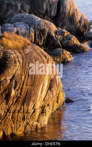 Litorale roccioso sul punto Atkinson, Lighthouse Park, Vancouver, British Columbia, Canada Foto Stock