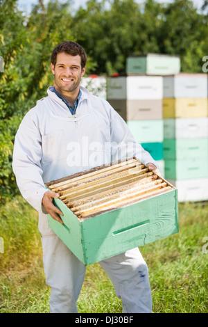 Fiducioso apicoltore portante cassa a nido d'ape Foto Stock